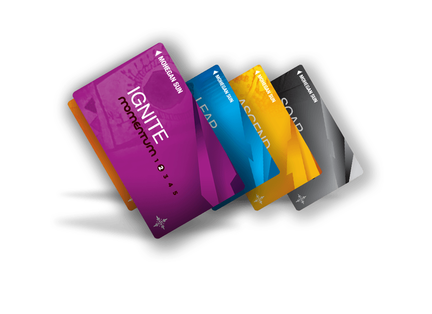 Momentum Cards with Ignite card in front